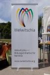 Welwitschia-0009